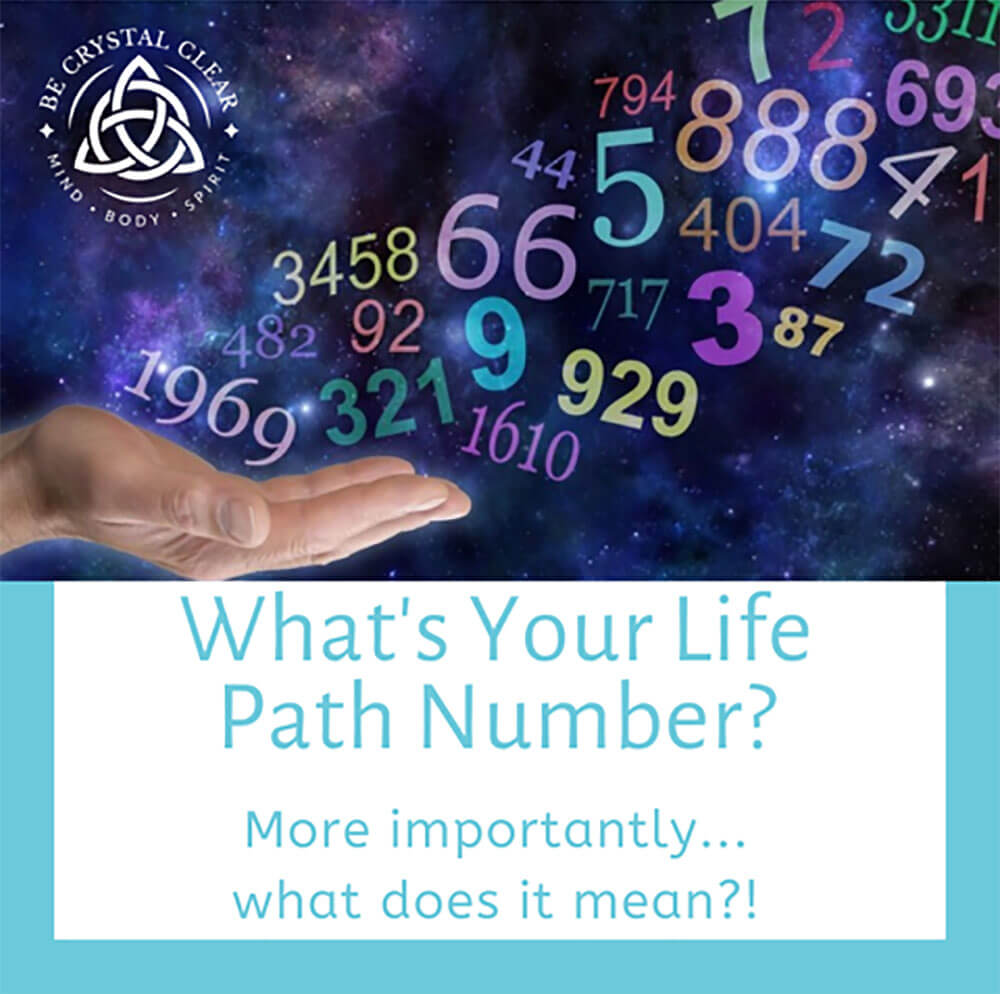 What's Your Life Path Number